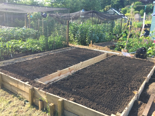 This is one of two 5' beds